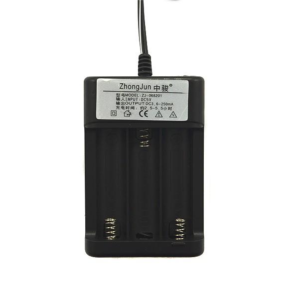 ŁADOWARKA DO AKUMULATORÓW USB ZJ-068201